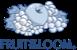 frutioftheloom-logo
